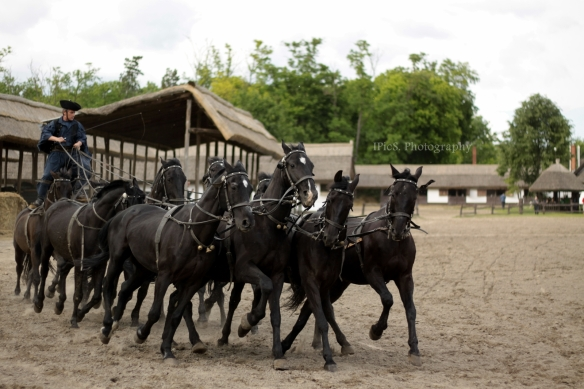 ungarische Pferdekutsche